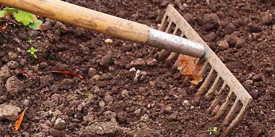 Control de las malas hierbas del jardín
